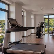 Steigenberger Hotel Stadt Loerrach, Germany - Gym
