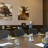 Steigenberger Airport Hotel, Amsterdam - Meetings